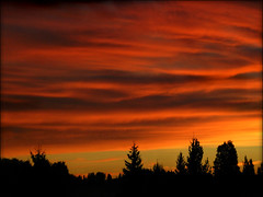 Red sky (digikuva) Tags: sunset red sky cloud tree forest sunrise finland rojo europe top sunsets heiluht olympus 20 kytj top20sunrisesunsets top20cloud perfectsunsetssunrisesandskys p9049025 exquisitesunsets