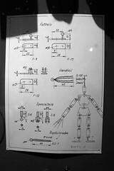 entdeckt: gottes plan by pixelroiber, on Flickr
