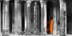 MonksInColumnsIMG_5460 (www.robheathcote.co.uk) Tags: orange stone temple ancient cambodia buddha columns monk siemreap angkor wat saffron