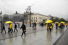 Yellow (96dpi) Tags: berlin yellow marathon unterdenlinden gelb selectivecolour bebelplatz 96dpi alevers