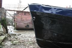 IMG_0124 (Melia Estkling) Tags: ocean city uk autumn winter sea summer england paris london history tourism graveyard birds