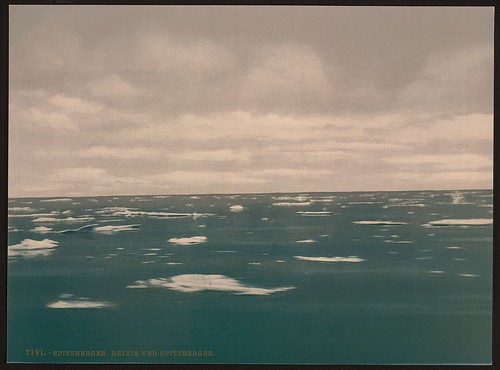 [Drifting ice, Spitzbergen, Norway] (LOC)