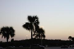 Space Center Sunset