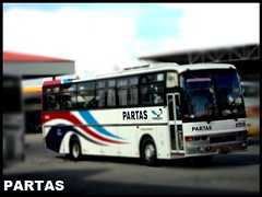 Partas Transportation Co. (Highway Star) Tags: man partas dmmc lionsstar