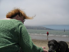 With the dogs on Crissy Field beach
