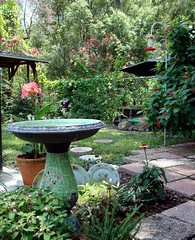My Backyard (turtlepatrol) Tags: flowers garden backyard birdbath mosaic explore plates steppingstones supershot