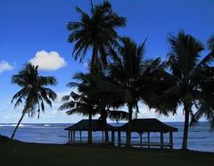"I got a serious case of ""The Samoan Blues"" (westrock-bob) Tags: show trees copyright beautiful canon palms island photography polynesia photo tv warm paradise pacific image pics south nation picture bob pic loveit palmtrees photograph southpacific tropical reality samoa s2is survivor cbs allrightsreserved malo westrock heavenonearth polynesian firedance americansamoa tropicalparadise fale savaii foa canons2is upolu 10faves talofa 25faves oceanian galu cuthill aplusphoto faasamoa platinumheartaward westrockbob alwayscomment5 vosplusbellesphotos bobcuthillphotographygmailcom saariysqualitypictures flickrcinated tuloulava faamolemole foafoa samoanislands bobcuthill oceaniana"