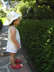 20070714 - 07 (heyannepark) Tags: kori cutetoddler 20months