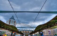 Rotterdam - finally