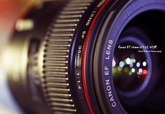 Canon EF 35mm f/1.4L USM - Macro Monday 1 [21/06/2010] (Dkillock) Tags: david macro ex closeup 35mm canon lens prime bokeh f14 sigma 5d usm fullframe f28 ef dg 105mm llens sigma105mmf28exdgmacro canonef35mmf14lusm macromondays macromonday killock 5dmarkii 5d2 5dmkii dkillock davidkillockphotography