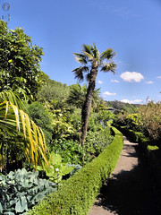 Inverewe Gardens 2010 4/18