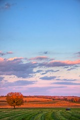 Harvest Time (Matt Champlin) Tags: auto life autumn sunset sky tree fall nature colors field clouds rural truck canon landscape evening colorful peace zoom country farming harvest scenic jordan foliage equipment vehicles fallingleaves upstatenewyork lonetree wideopenspace faraway expanse harvesttime elbridge fieldtree abigfave countrylandscapes autumnfarm countryscenic anawesomeshot lonetreeinfield farminthefall harvestatthefarm treeincolor