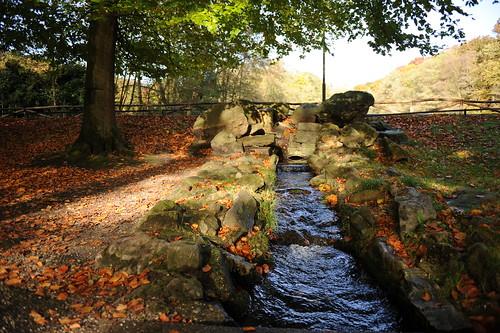 Herfst in Park Sonsbeek, Arnhem