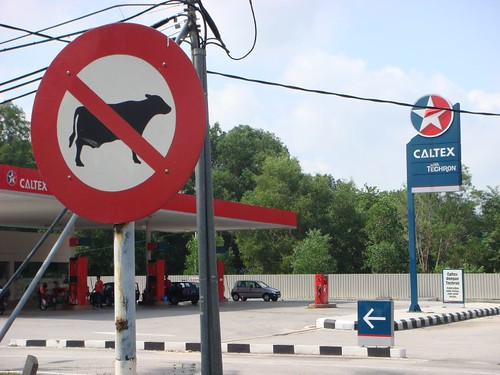 Cows not allowed at the gas station...