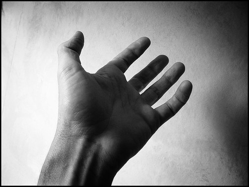 A single hand and arm, with the palm facing up