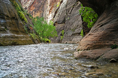 Virgin River (GerryL) Tags: utah zionnationalpark springdale thenarrows gerryl nikoncoolpixl12