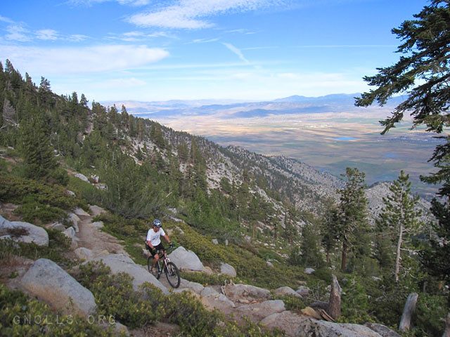 Tahoe Rim Trail overlooking the Carson Valley