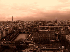 Paris... je t'aime.- (ancama_99(toni)) Tags: street leica city trip travel bridge light vacation sky urban house holiday paris france color building tower art water rio yellow sepia architecture ro photoshop buildings river french geotagged lumix photography photo interestingness interesting agua europa europe cityscape torre tour photos eiffeltower cityscapes catedral eiffel photographic notredame panasonic explore toureiffel torreeiffel palais gargoyles trocadero coolest francia aigua 2007 pars urbanas parigi urbanscapes gargola chaillot grgolas 50faves 10faves 123bw fz7 dmcfz7 25faves lesiles holidaysvacanzeurlaub ancama99 interesantsimo