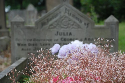 Julia's Arrangement of Flowers