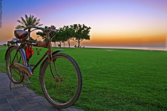 Bike Sunrise (A.alFoudry) Tags: blue trees sea summer orange holiday tree green colors grass bike bicycle sunrise canon eos bravo purple resort e 5d kuwait usm ef 1740mm canonef1740mmf4lusm hdr kuwaiti q8 abdullah  khairan blueribbonwinner f4l kuw xnuzha alfoudry  abdullahalfoudry foudryphotocom kuwaitvoluntaryworkcenter