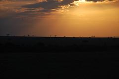 MASAI MARA SUNSET (saloask) Tags: salo askenazi