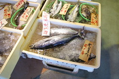 ひっそりと鮮魚