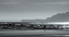 Smaills Beach Dunedin B&W 1 (_setev) Tags: newzealand summer blackandwhite bw monochrome stephen coastal utata otago dunedin seashore murphy downunder setev utatabythesea downunderphotos stephenmurphy utata:project=utatabythesea smaillsbeach httpdownunderphotosblogspotcom
