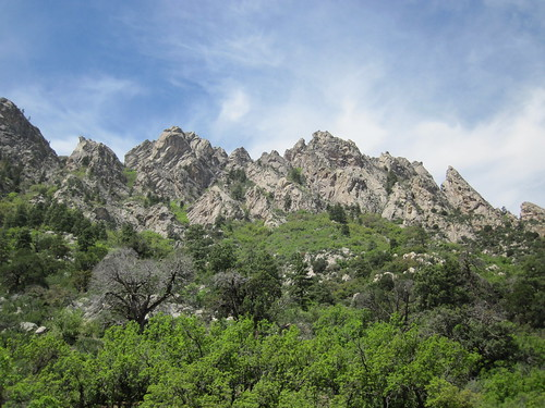 Crags of the Organ Mountains