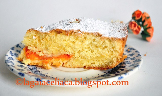 torta mandorle e albicocche