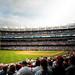 Yankee Stadium | Bronx