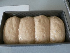 Milk Bread 003