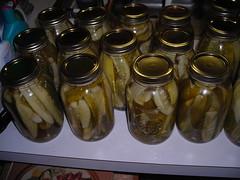 pickles! we've got 30 jars of 'em!