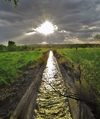 A Dream of Water (benrobertsabq) Tags: sun newmexico green wet water field grass clouds concrete star evening acequia glare shine ditch farm horizon perspective albuquerque dry drain reflect abq flare splash agriculture nm channel irrigation drainage splish mywinners candelariafarms