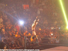 Randy Orton at Summerslam 07' (drgthang) Tags: sports raw wrestling entertainment wrestlers wwe randyorton johncena summerslam liveevents