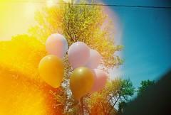 balloons, summertime (Amy Fichter) Tags: yellowpeace superheadz vivitarultrawideslimclone wideangle ultrawideangle 22mm analog film june summer 2010 balloons tree lightleak flare sky line wire kodakgold400 400asa 400speed menomoniewisconsin