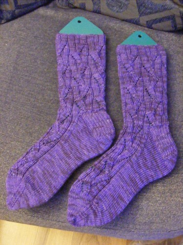 Purple prize socks pic2