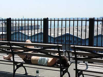 dame qui bronze au soleil sur banc.jpg