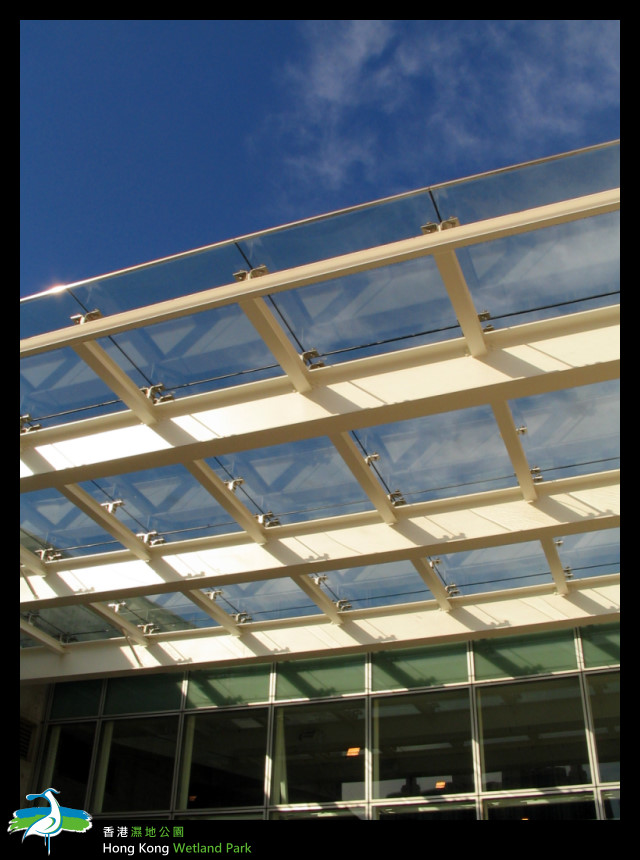 入口天花板上窗與陽光的配合