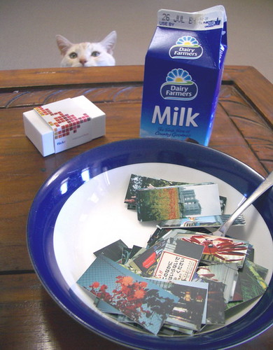 for me? -- cat cats moo cards felix milk minicards mini naughty bowl cereal yummy
