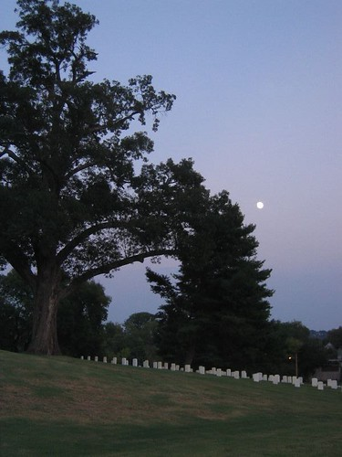 Moon Rising over Cemetery