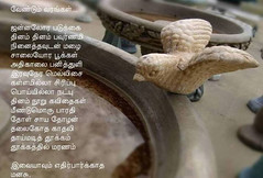 kavi (vaishu87) Tags: kavithai