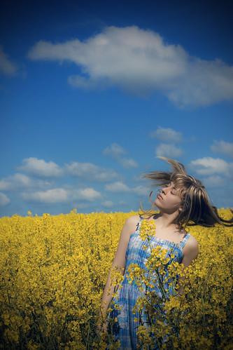 フリー写真素材, 人物, 女性, 花畑, 菜の花, 髪がなびく, 人と花,