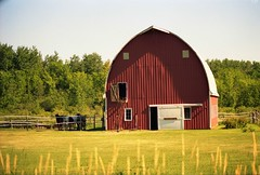 Blessed Farmland