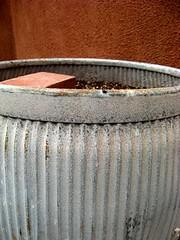 empty pot (ybonesy) Tags: newmexico corrales albuquerquewomensflickrmeet