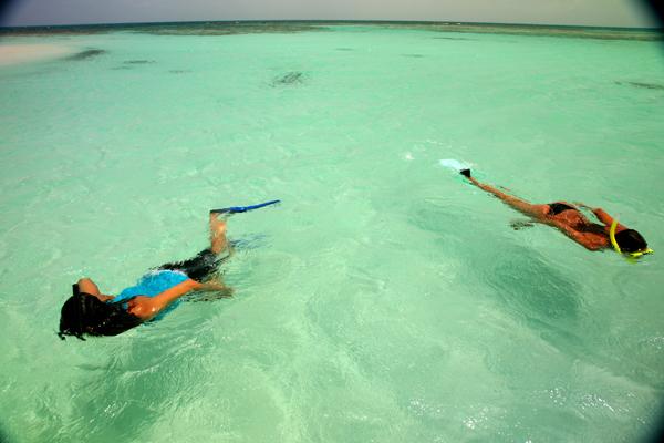 shadow snorkel