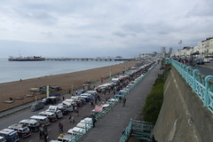 Brighton Breeze #71