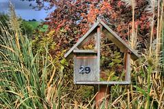 My Letterbox (chris17nz) Tags: trees newzealand seascape photoshop landscape scary scenery kayak nz otago dunedin hdr tonemap dphdr