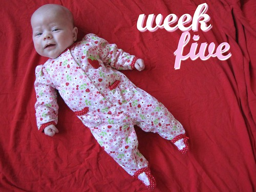 Five weeks old