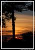 Pôr-do-Sol ! (crenan) Tags: world santa city sunset sol me brasil sunrise d50 still interesting nikon do calendar time photos maria fast sunsets explore santamaria around sunrises score rs gramado pôr naturesfinest blueribbonwinner pôdosol sunsettime tonights fotoclube d80 citysunsets scoremefast câmeradeourobrasil sunsetdreams~endlesssunrise sunsetdreams crenan onlythebestare grupo1a10brasil visãofotográfica carlosrenanpiressantos