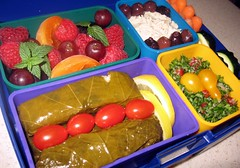 Dolma Bento (Jason + Amanda) Tags: food lunch vegetarian bento dolma tabouli babaganouj laptoplunch